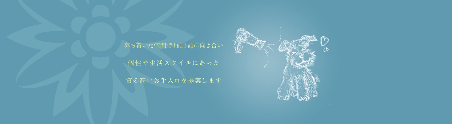 DogSalon Fleur(フルール):メインイメージ